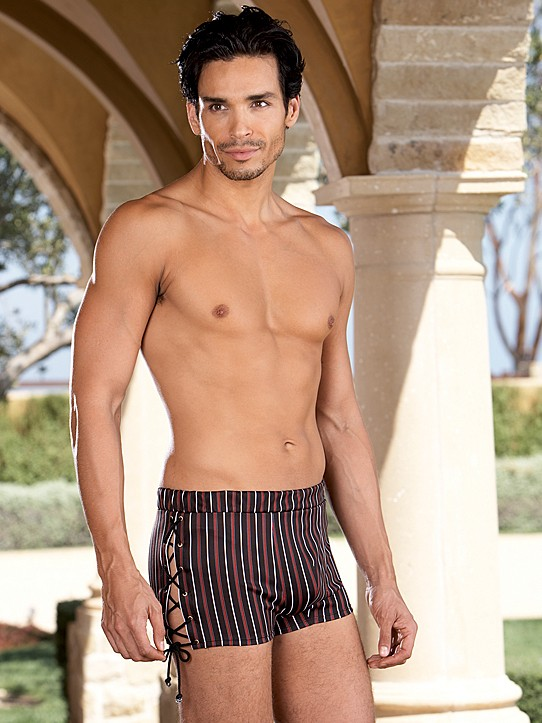 Microfiber Striped Boxer Brief